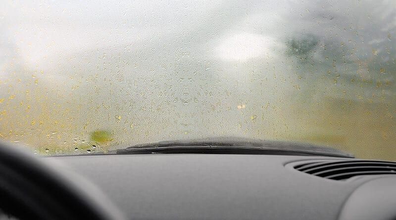 defog windshield
